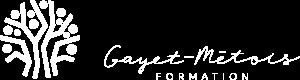 Gayet Metois Formation